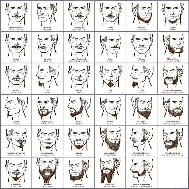 髭種類.jpg
